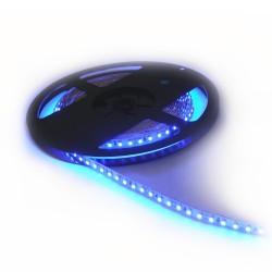LED juosta 14,4W/m 12V SMD 5050 60vnt/m mėlyna